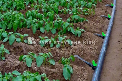 HDPE Pipe in Agricultura